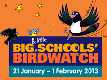 RSBP school birdwatch 2013